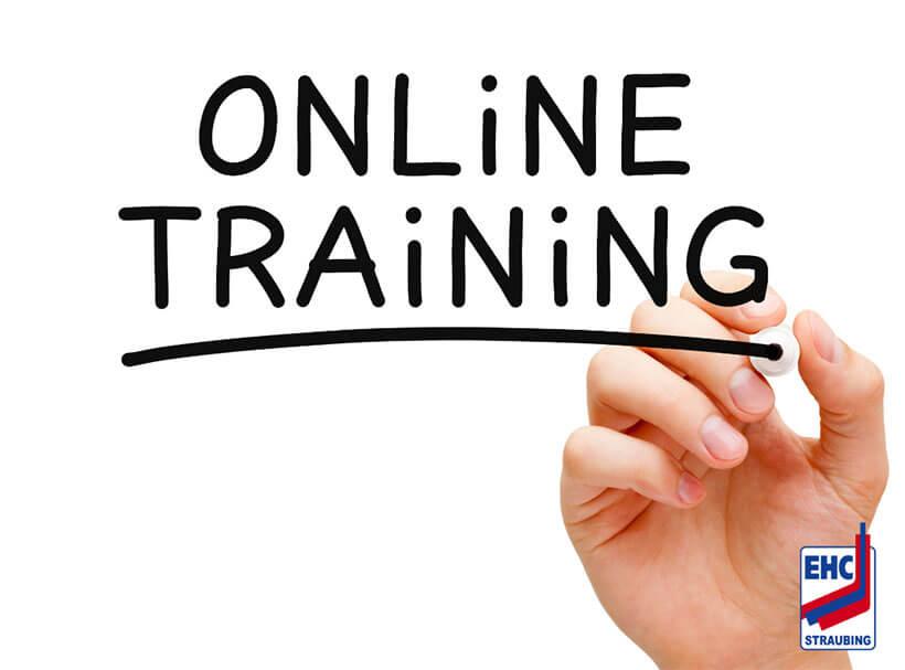 """Hand mit Stift schreibt """"Online Training"""""""